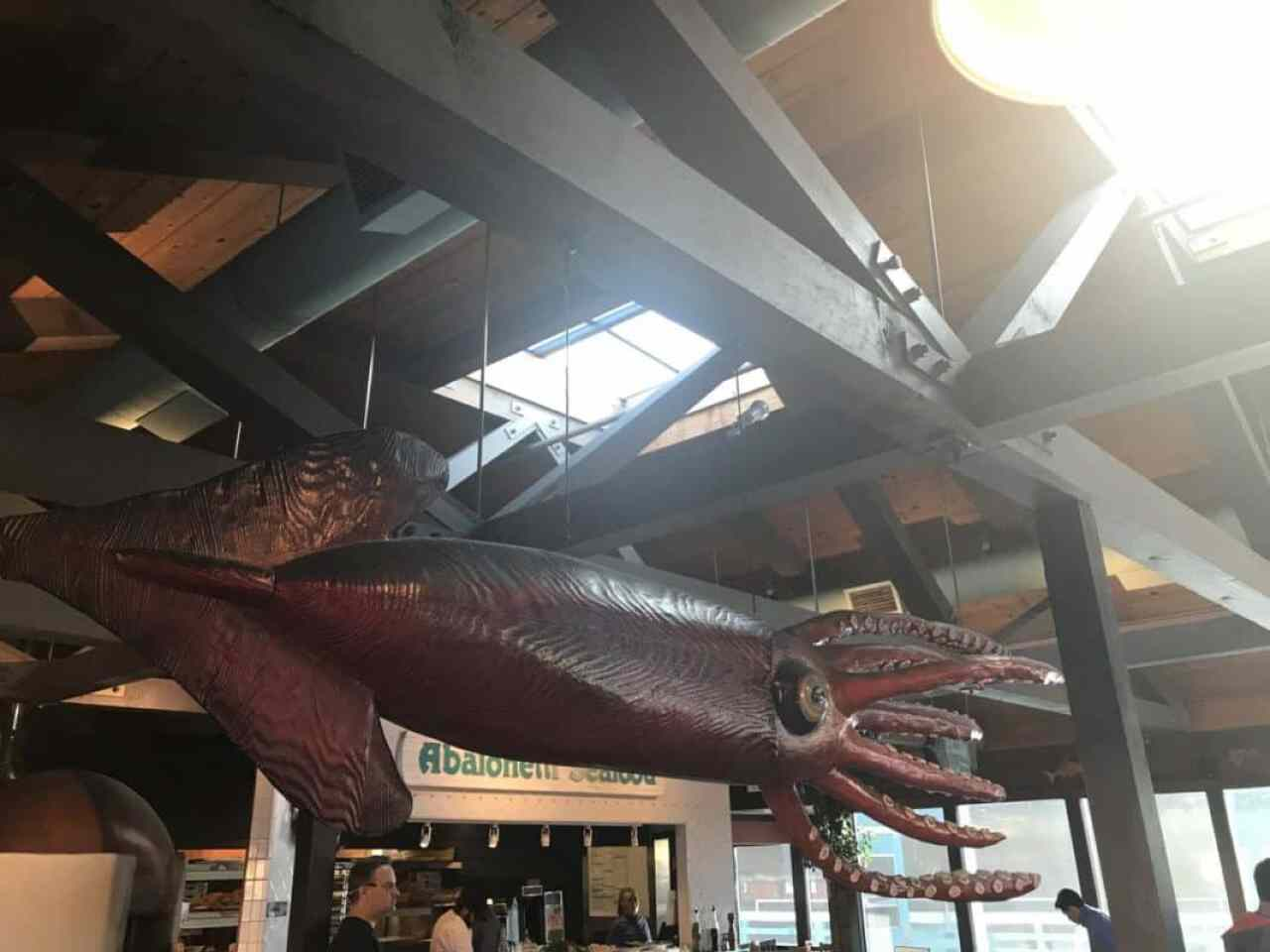 abalonetti bar giant squid