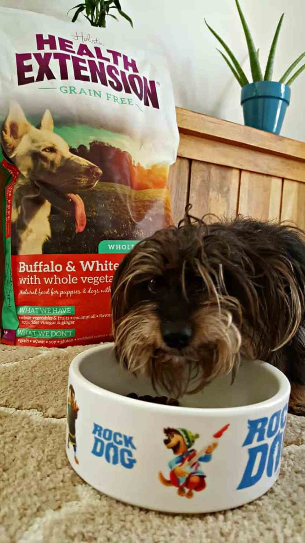 bailey eating holistic health extension grain free