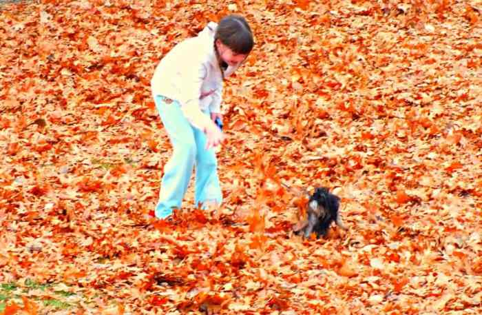 mackenzie and bailey playing in leaves