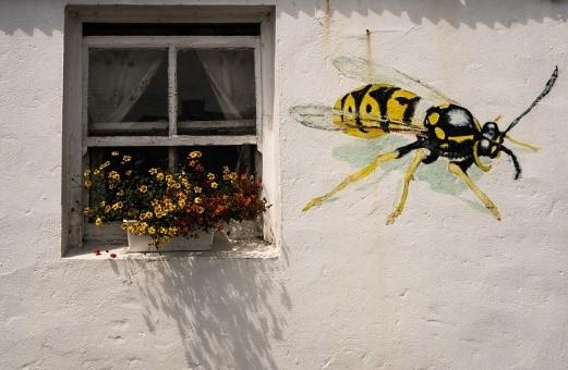 best home design ideas house paint