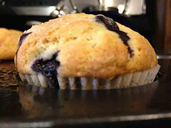 Sometimes life calls for a ridiculously easy blueberry muffins recipe. ThisQuick and Easy Blueberry Muffins Recipe is just that. It makes moist, delicious muffins bursting with blueberries.