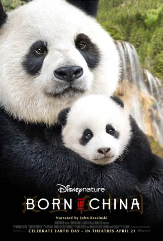 born in china panda and baby