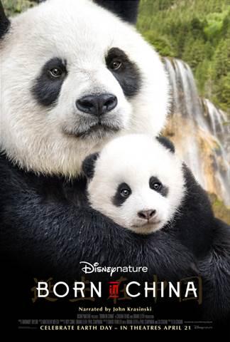 born in china panda and baby