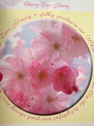 cherry tree faery