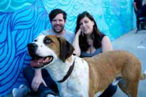 Downward Dog Talking Dogs and Their Humans with Allison Tolman and Samm Hodges