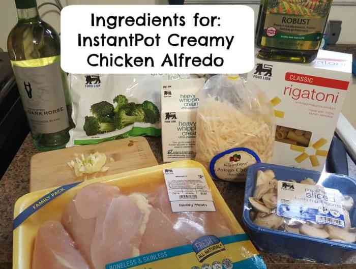 Instant Pot Easy Creamy Chicken Alfredo Pasta ingredients needed