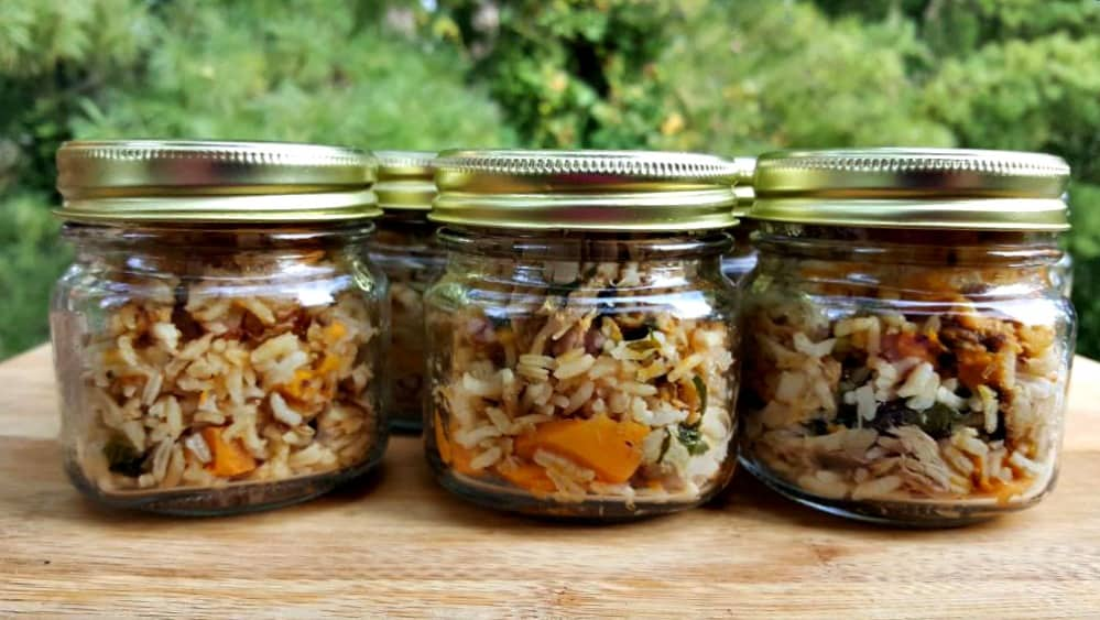 instant pot dog food in jars