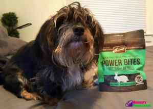 Merrick Power Bites Dog Treats Bailey Mae Rates them Two Paws
