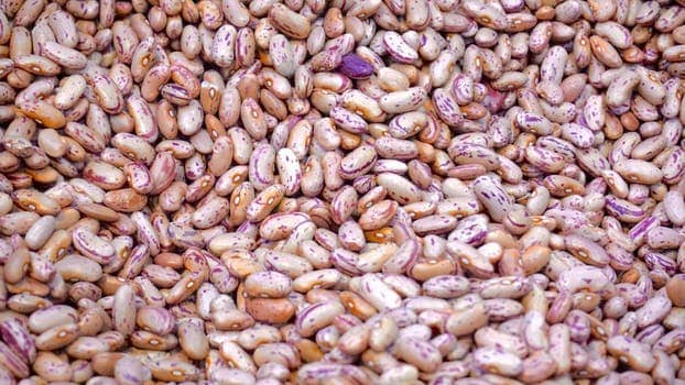 Instant Pot Cooking Dried Beans (No Presoaking)
