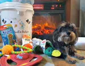 HARTZ Unleashes A Holiday Bucket Full of Toys to Save Dogs Lives