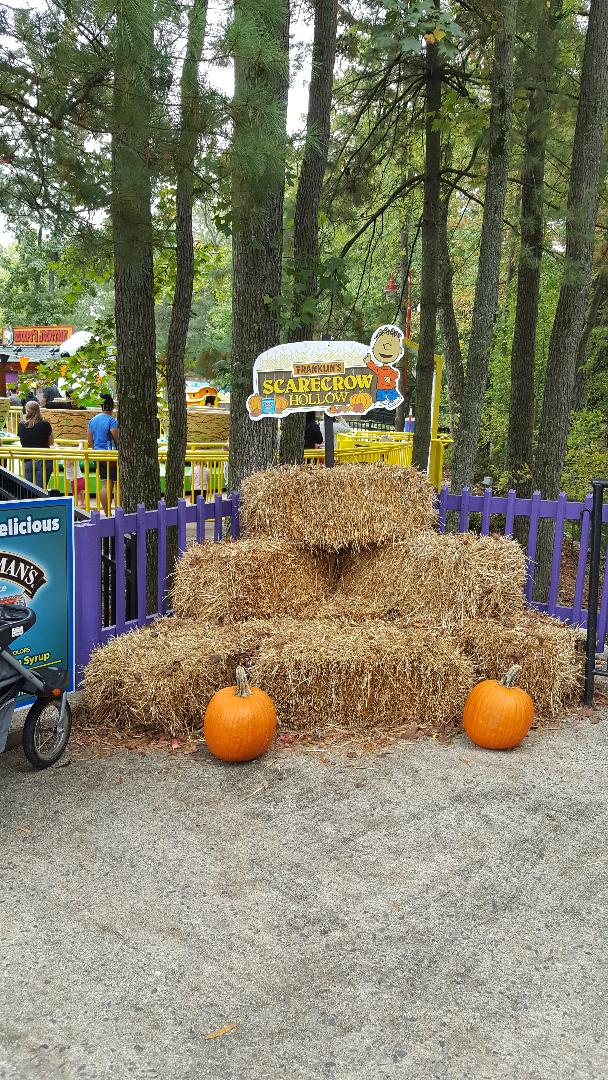 the great pumpkin fest franklins scarecrow hollow