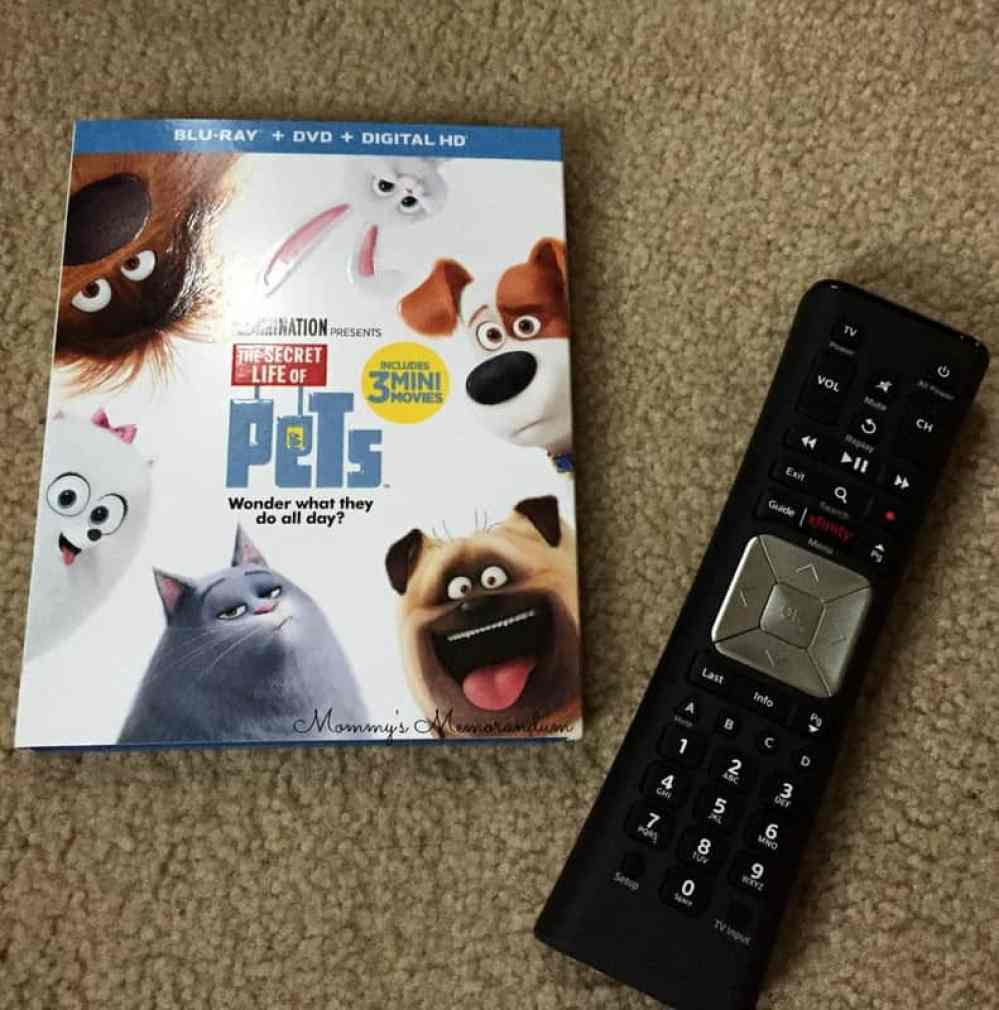 the-secret-life-of-pets-dvd-blu-ray