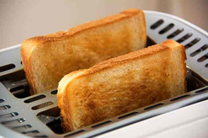 How to Use Toasters Properly – Guide for Housewives