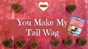 Dog Treats that Make Their Tails Wag!