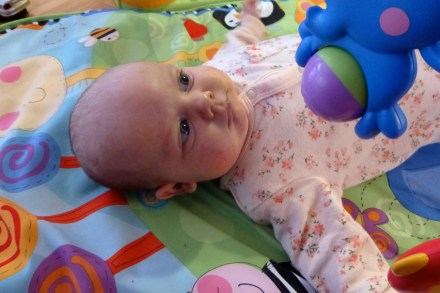 Amélie 8 weeks
