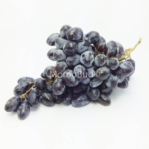 Autumn Royal Grape