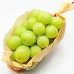 Japanese Muscat grape (2)