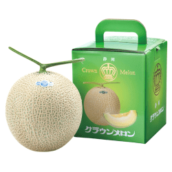 Shizuoka Crown Melon