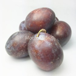 Tulare Giant Sugar Plum