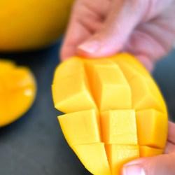 Honey Mango 3