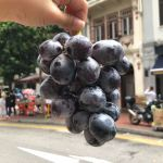 Adora Seedless® Black Seedless Grapes Grab