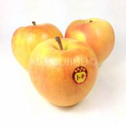 Aomori Toki Apple in 3