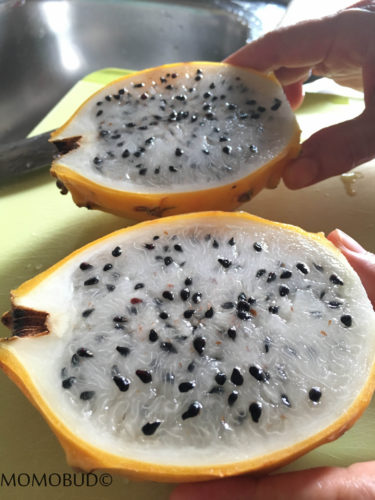 The content of Yellow Pitahaya