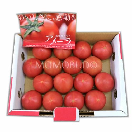 Japanese Amela Tomato Gift Box