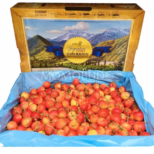 CMI Washington Rainier Cherry Box (4kg)
