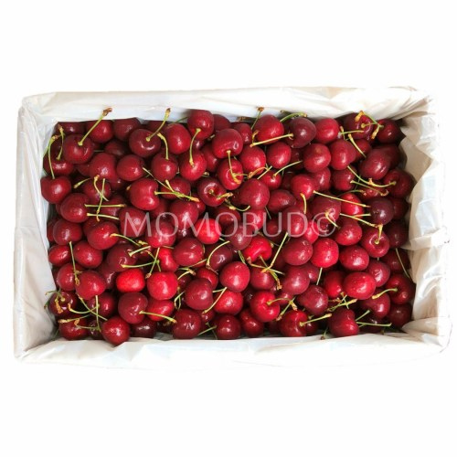 NZ Red Cherry 5kg Box