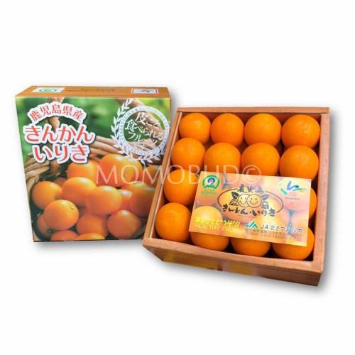 Japanese Iriki Kinkan 600g Gift Box