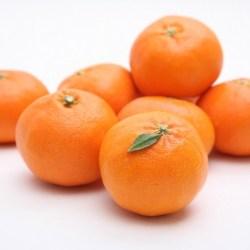 Jeju Red Hyang Orange