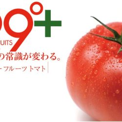 Super Tomato Fruit