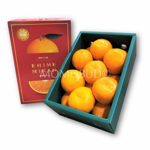 ehime-mikan-gift-box-1-2kg