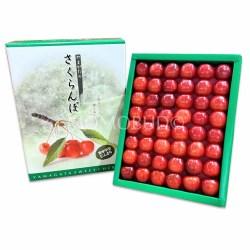 Japanese Sato Nishiki Sakurabon Cherry Gift Box 300g