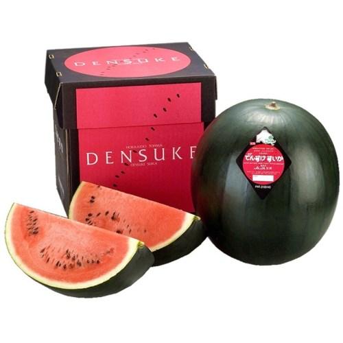 Japanese Densuke Watermelon