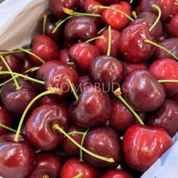 Jumbo Wandin Valley Tasmanian Red Cherry1