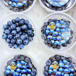Ehime Blueberry Tray