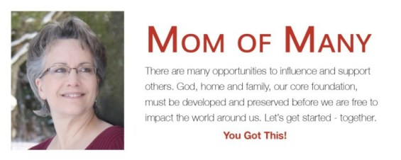 For tips, recommendations and ideas - or just support, join our community at MomofMany.net