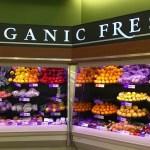 British food vs American Food – lack of GMOs?