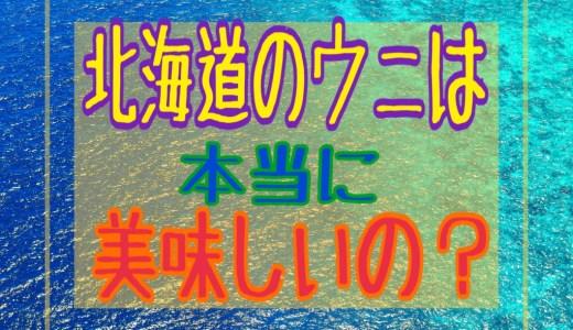 北海道のウニは本当に美味しいの?美味しい理由は海にあった!