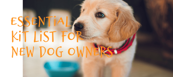 Essential Kit List for New Dog Owners