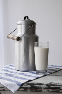 milk, food, nutrition to increase breast size