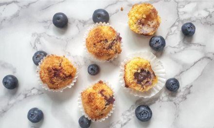 Keto Blueberry Coconut Macaroons