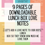 download notes lunch box