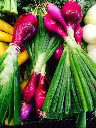 Local Red Spring Onions