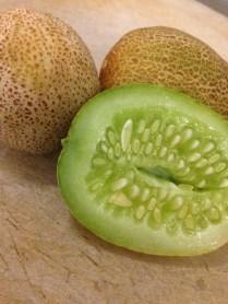 Local produce find: Little Potato Cucumbers in Jessup!