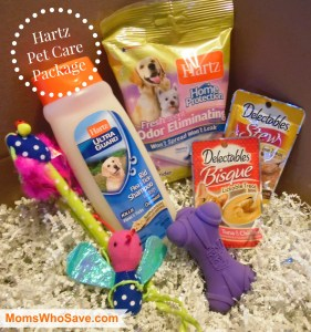 BabbleBoxx Pet Care Package — Ideas for Spoiling Your Furry Family Members