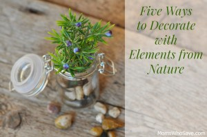 Five Ways to Decorate with Elements from Nature