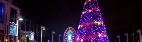 Free weekend events in Maryland National Harbor Tree lighting